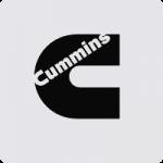 motorisation cummings
